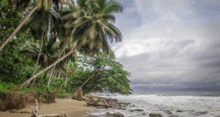 Beste Reisezeit und Klima in Kamerun